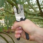 Handles for Life:Pruned if you do, and pruned if you don't!